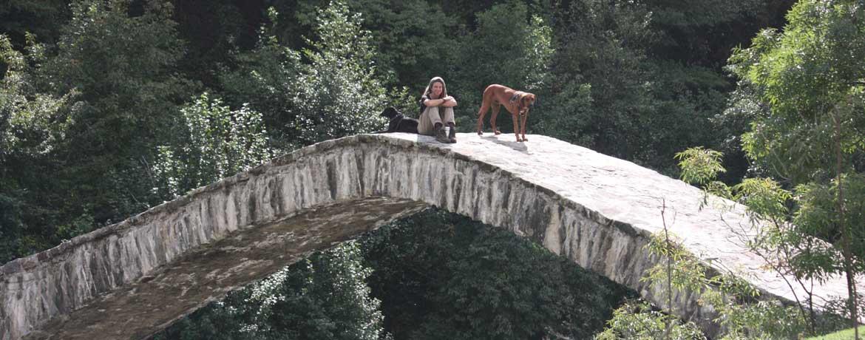 Mit dem Velo und Hunden um die Welt, Teil 7