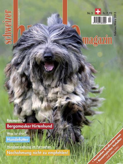 Schweizer Hunde Magazin 02/2013