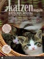 Kätzchen Spezial