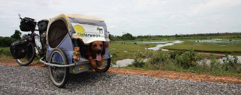 Mit dem Velo und Hunden um die Welt, Teil 26