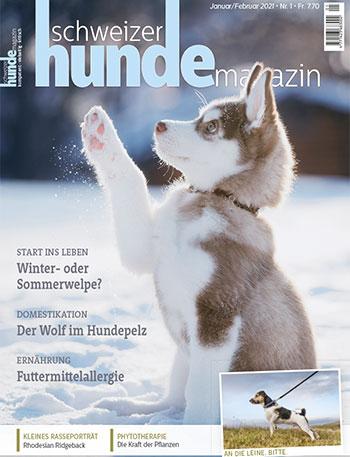 Aktuelle Hundemagazin Ausgabe